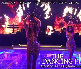 TheDancingFireEntertainment